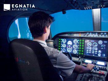Professional Pilot training on the SIM